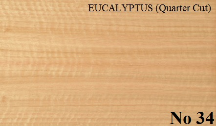 EUCALYPTUS Quartered