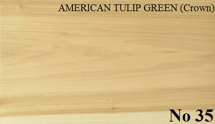 AMERICAN TULIP GREEN Crown Cut